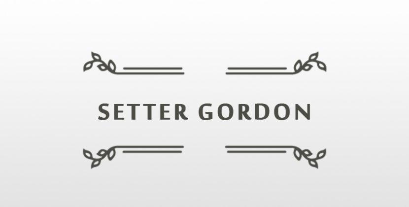 PROGRAMMA DELLA LISTA PERI PER IL SETTER GORDON CLUB
